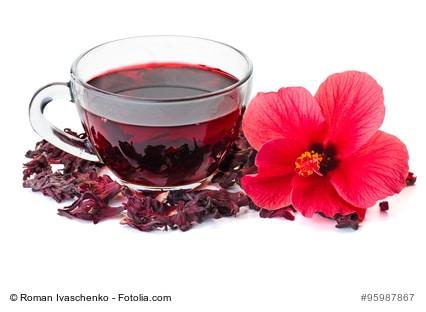 hibiskus inhaltsstoffe anwendungsbereiche von tee pflanze. Black Bedroom Furniture Sets. Home Design Ideas