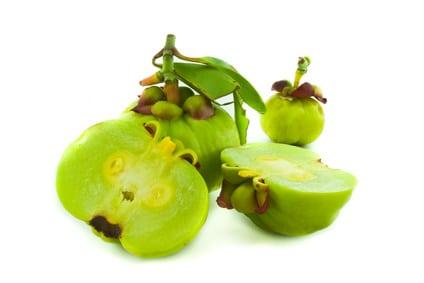 Obst zur Gewichtsreduktion Cambogia-Extrakt