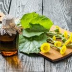 huflattich (Tussilago farfara) and the infusion