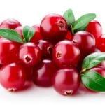 Cranberry mit Blättern